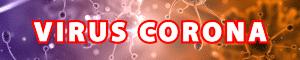 Phòng-chống-bệnh-viêm-đường-hô-hấp-cấp-do-virus-ncov-corona